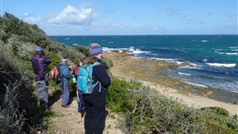 Great coastal walks - Croajingolong