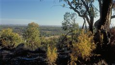 Heathcote-Graytown National Park