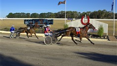 Hamilton Harness Races 2014