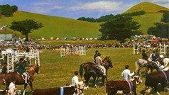 Camperdown Show