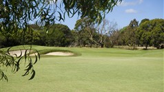 Curlewis Golf Course