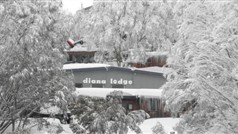 Diana Lodge Winter