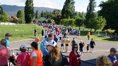 Myrtleford Cup Fun Run