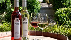 Politini Wines & Casolare B&B Accommodation