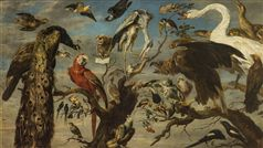 Frans Snyders  Flemish 1579–1657  A concert of bird's 1630–40 oil on canvas 136.5 х 240.0 cm  The State Hermitage Museum, St Petersburg  Acquired from the collection of Sir Robert Walpole, 1779 (Inv. № ГЭ-607)