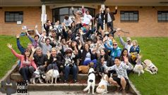Paws for a Cause - 2015 Charity Dog Walk