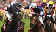 2012 Melbourne Cup victory