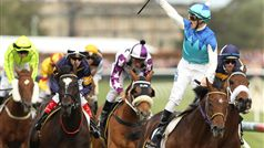 Admire Ratki winning the 2014 Caulfield Cup