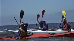 Learning paddle strokes on a sea kayak course