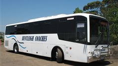 Bentleigh Coaches