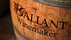 T'Gallant Winemakers