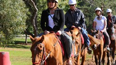 Horseback Winery Tour