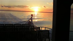 Twilight Cruise - Wildlife Coast Cruises