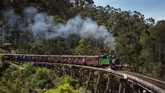 Puffing Billy crosses the Trestle Bridge