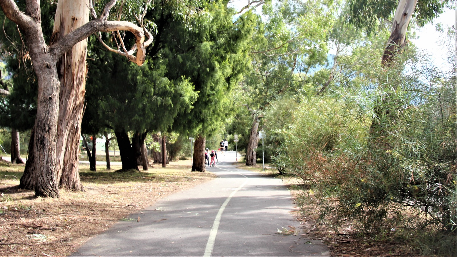 Walking track to Halls Gap shops and restaurants