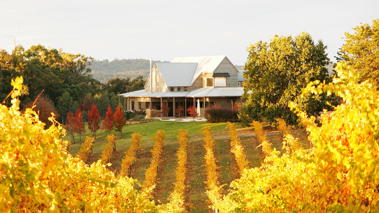 Toms Cap Vineyard Retreat