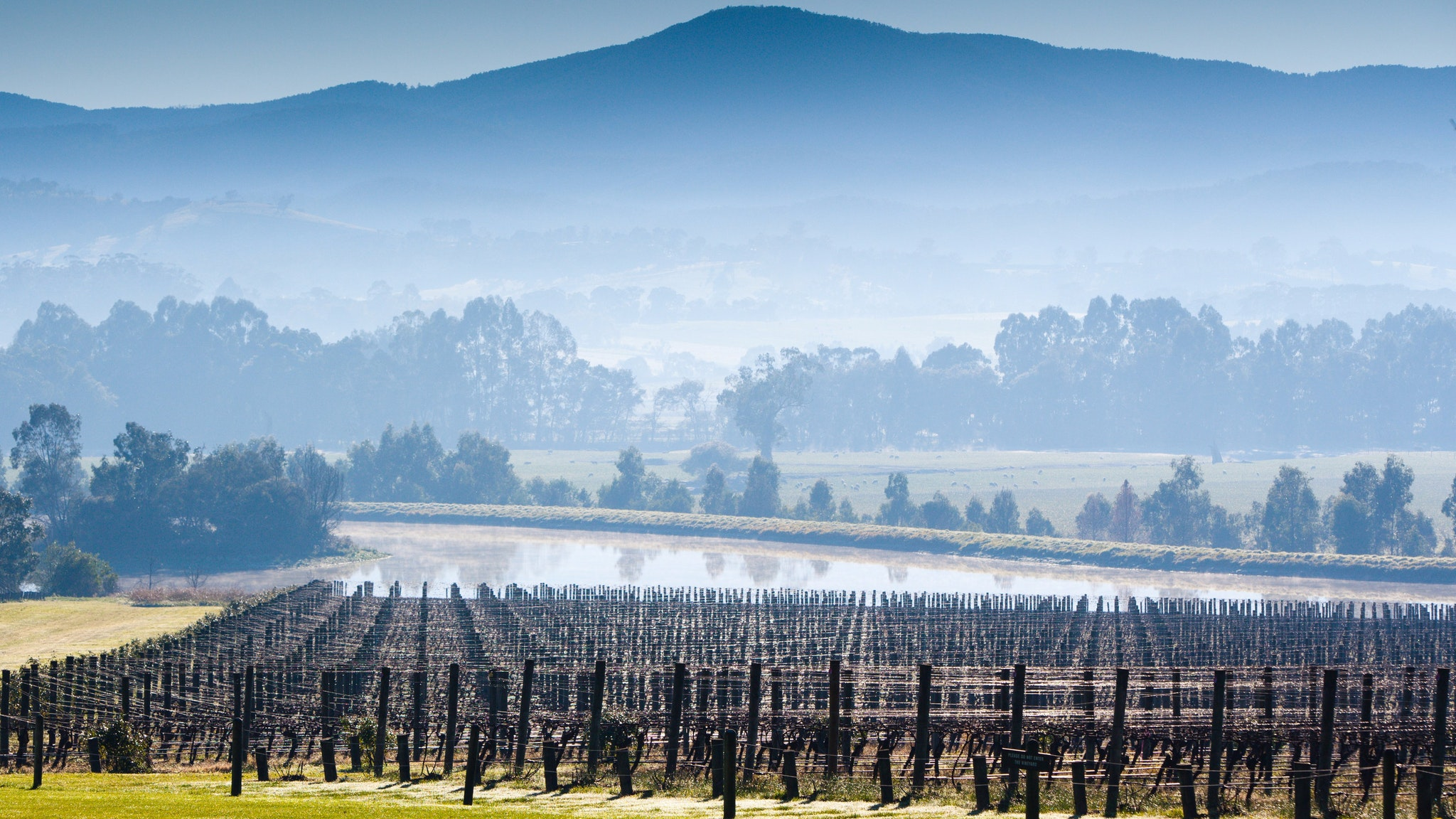 Yarra Valley during Winter