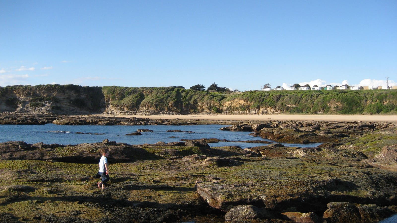 Explore our rock pools