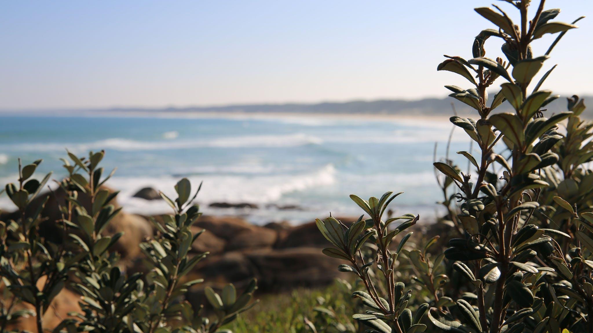 Cape Conran Coastal Park, Attraction, Gippsland, Victoria