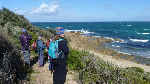 Small group nature tour - Croajingolong