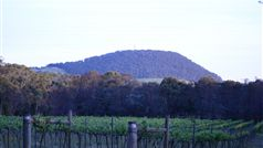 Mount Buninyong Winery