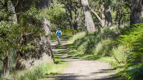 Cycling along the picturesque Goldfields Track