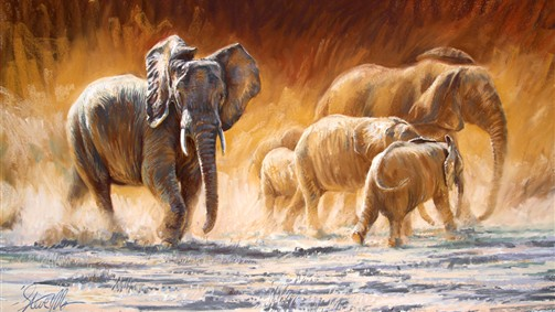 'The matriarch comes-African elephants'