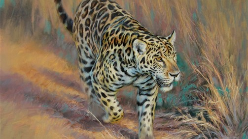 'On the prowl-African leopard'
