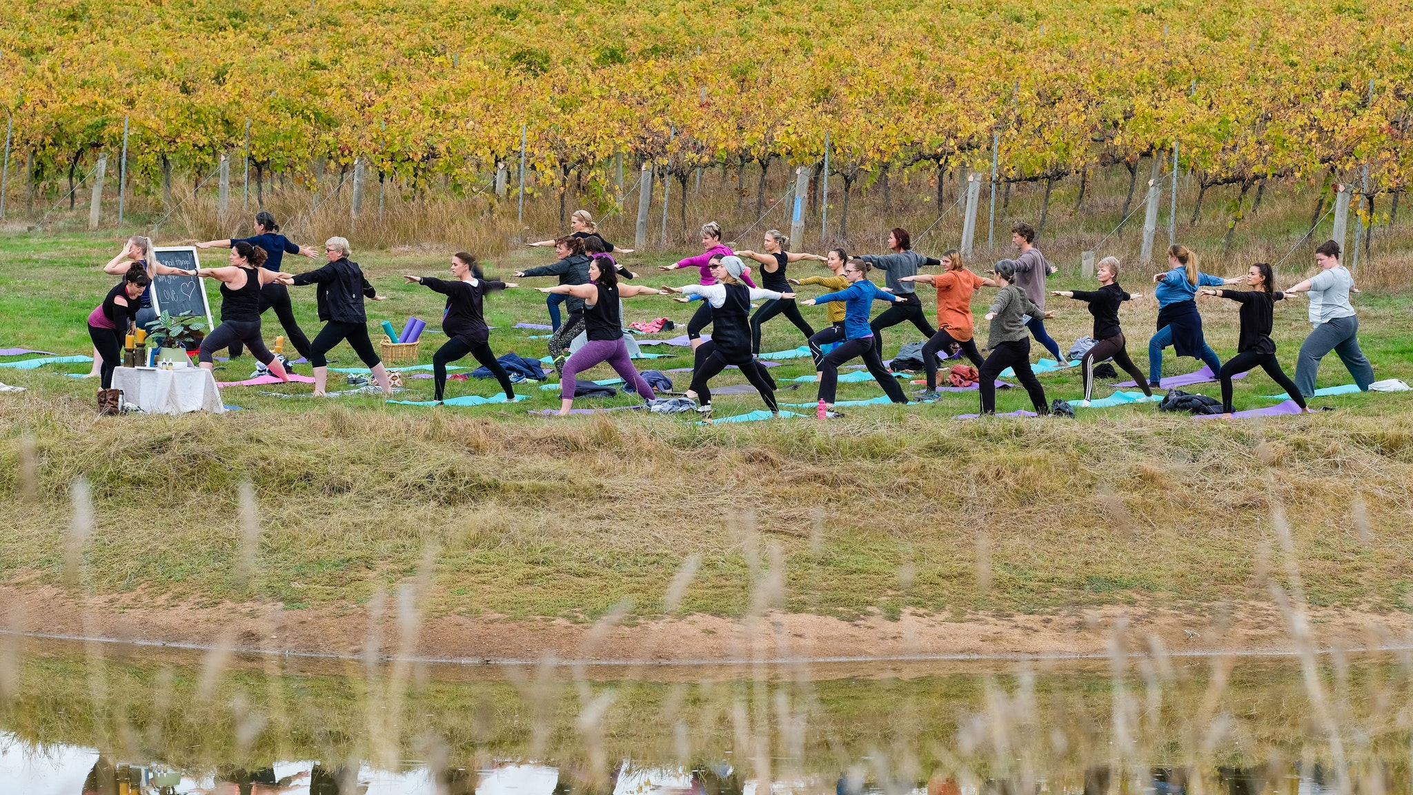 2017 Yoga in the Vines