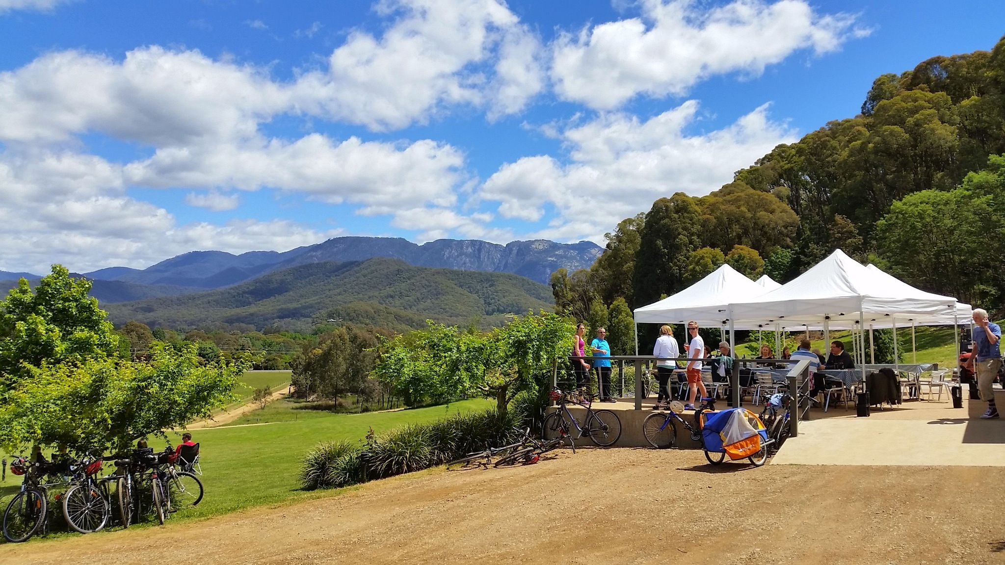 Picnic in the Vines at Ringer Reef winery