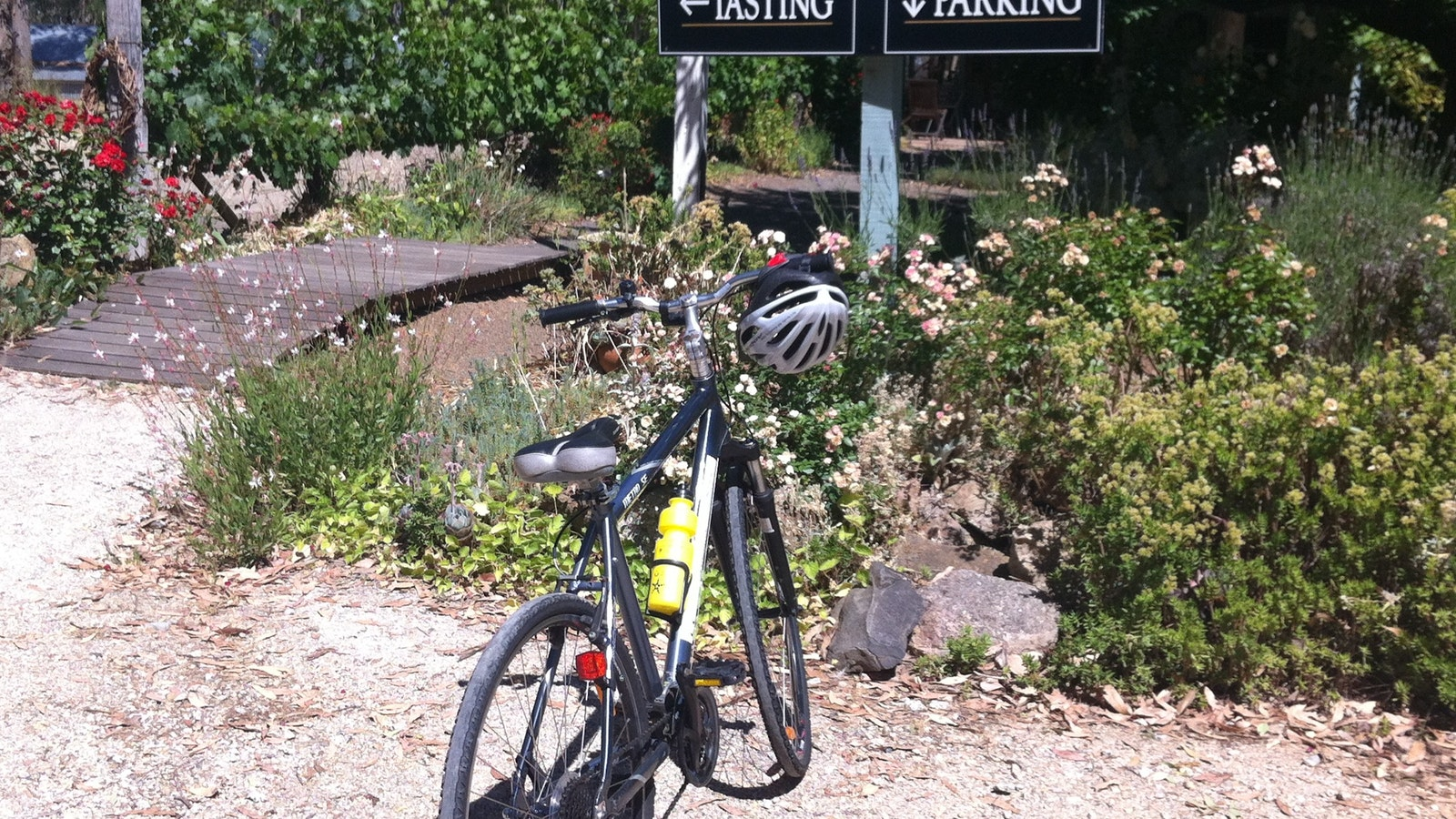 Cellar door stop on our cycling tour