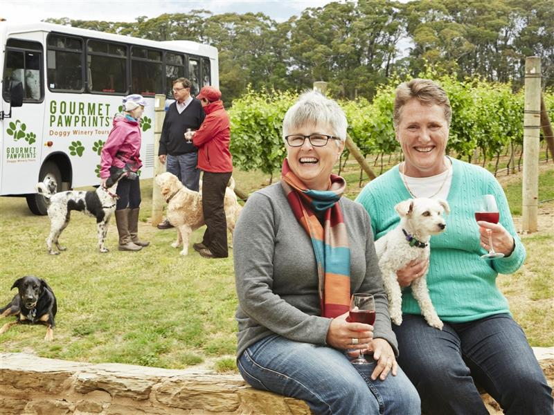 Pet friendly days out, Road trips and itineraries, Victoria
