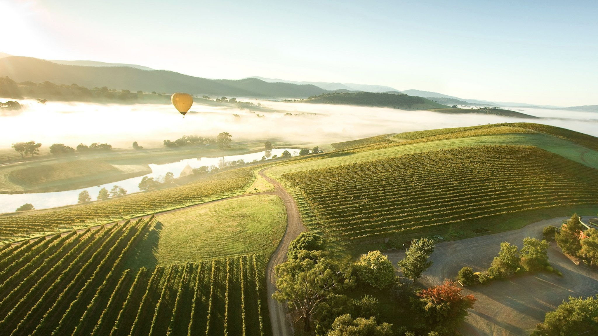 Hot Balloon over Yarra Valley Region