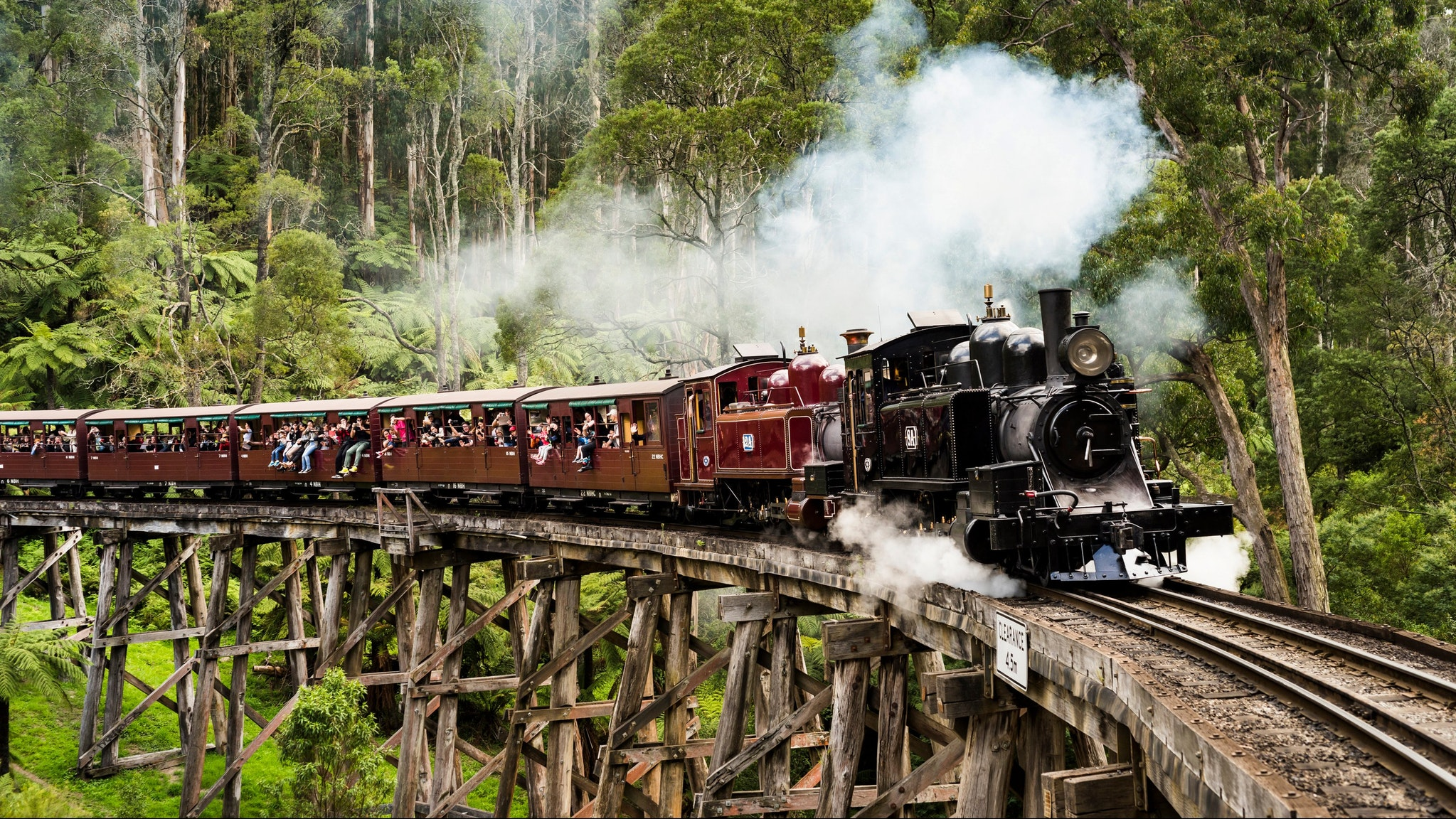 Puffing Billy Yarra Valley Dandenong Ranges Private Tour