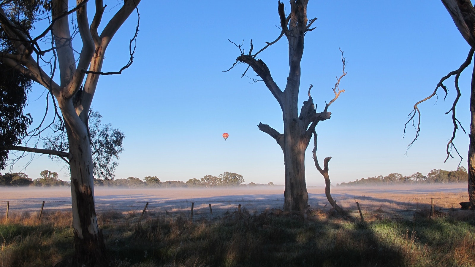 hot air balloon over Daylesford