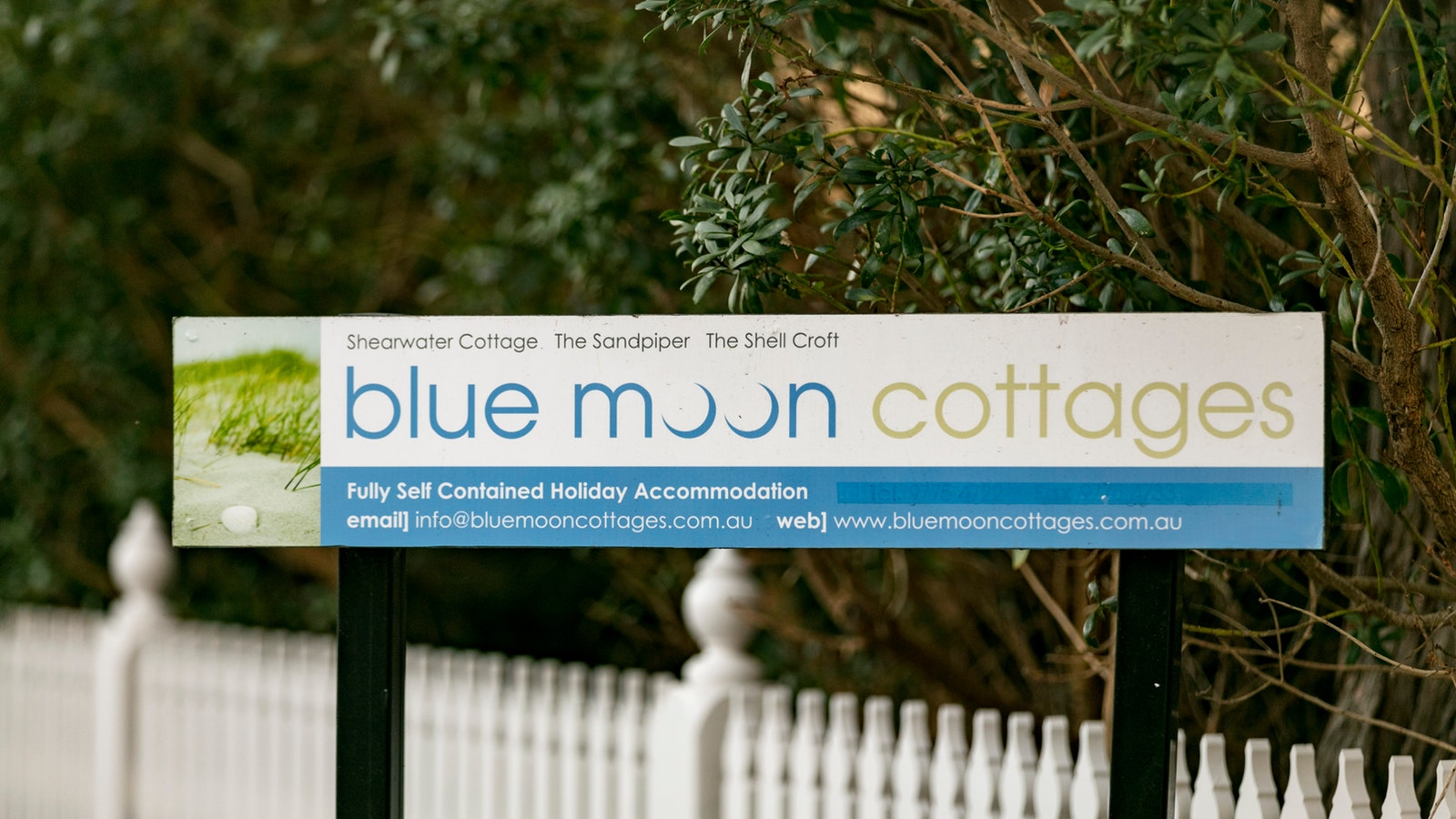 Welcome to Blue Moon Cottages
