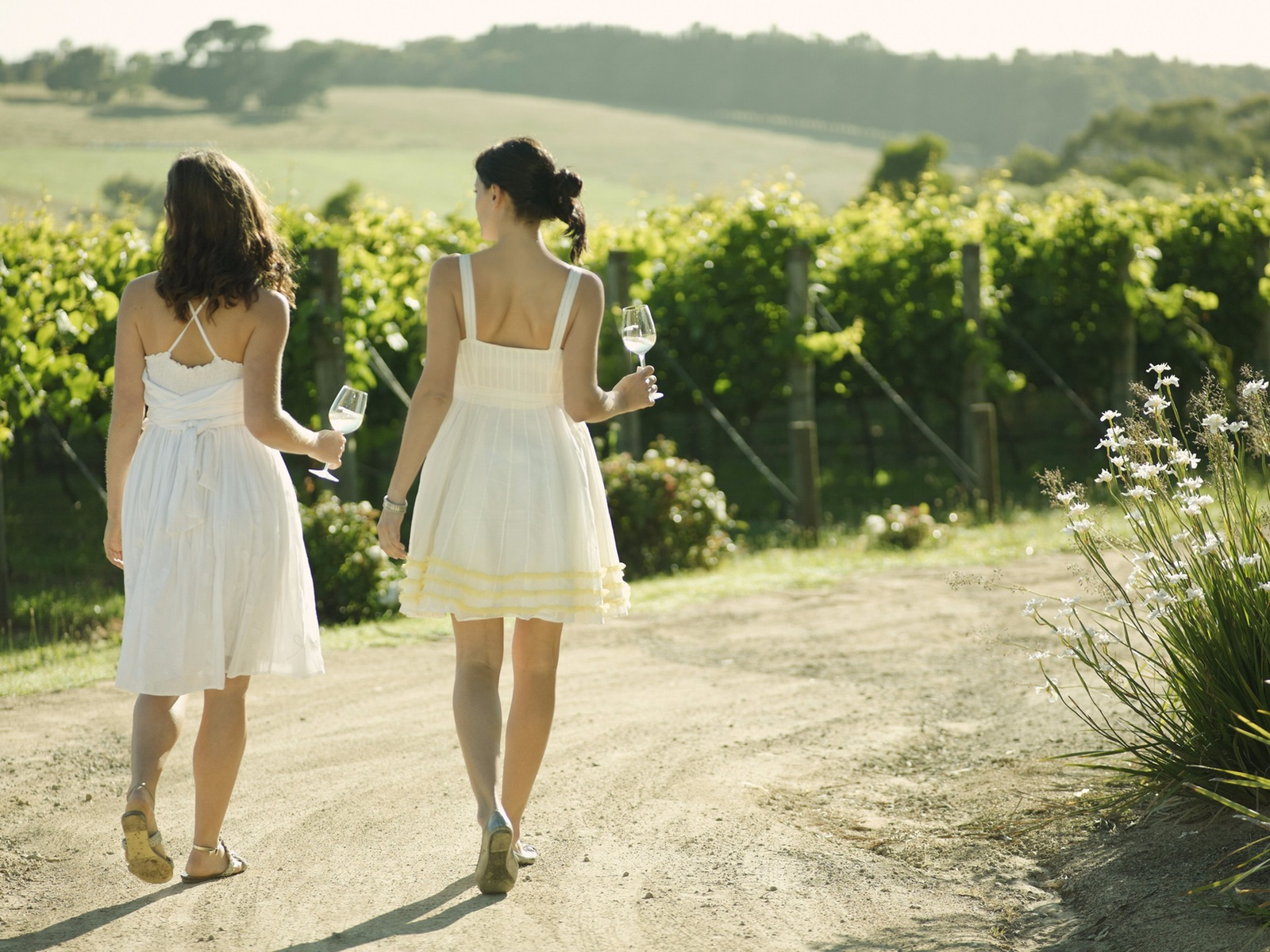 Mornington Peninsula produce tours