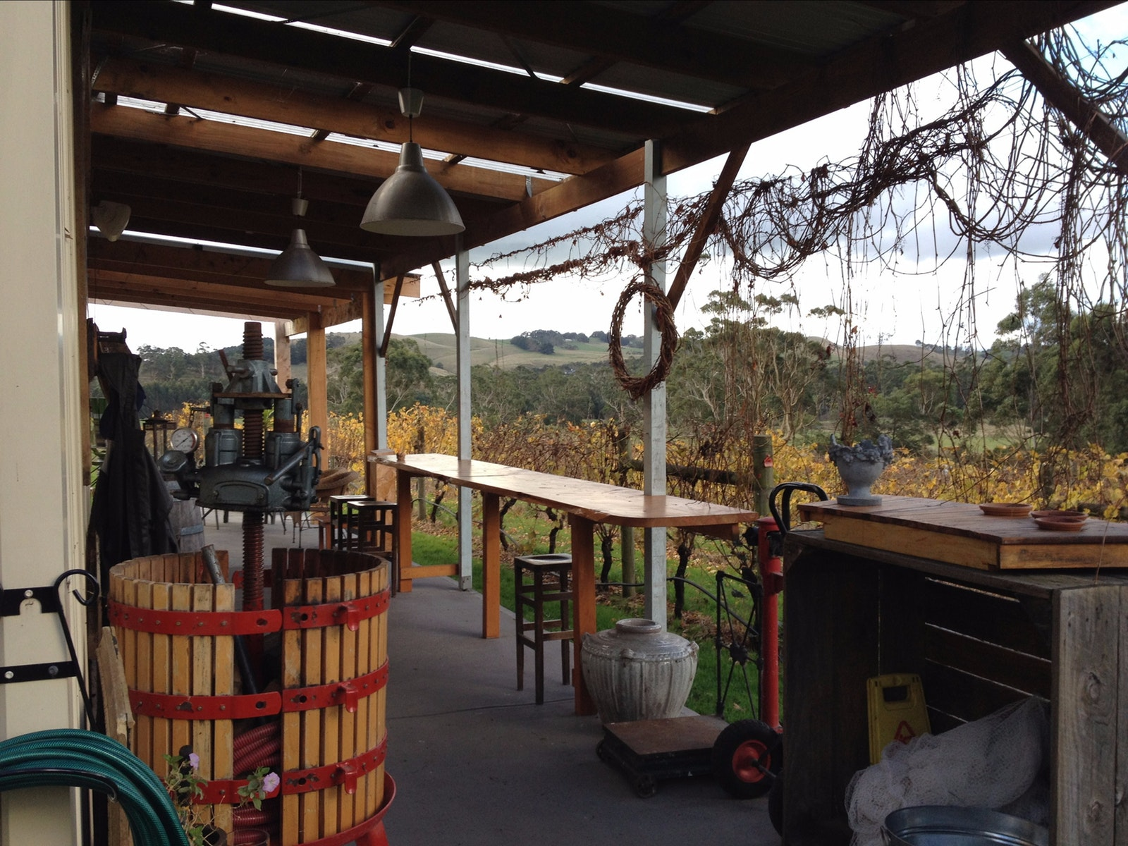Gippsland Wine Company patio overlooking vineyard.