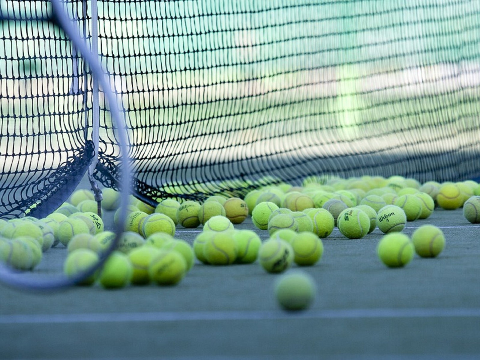 Tennis Balls and Net