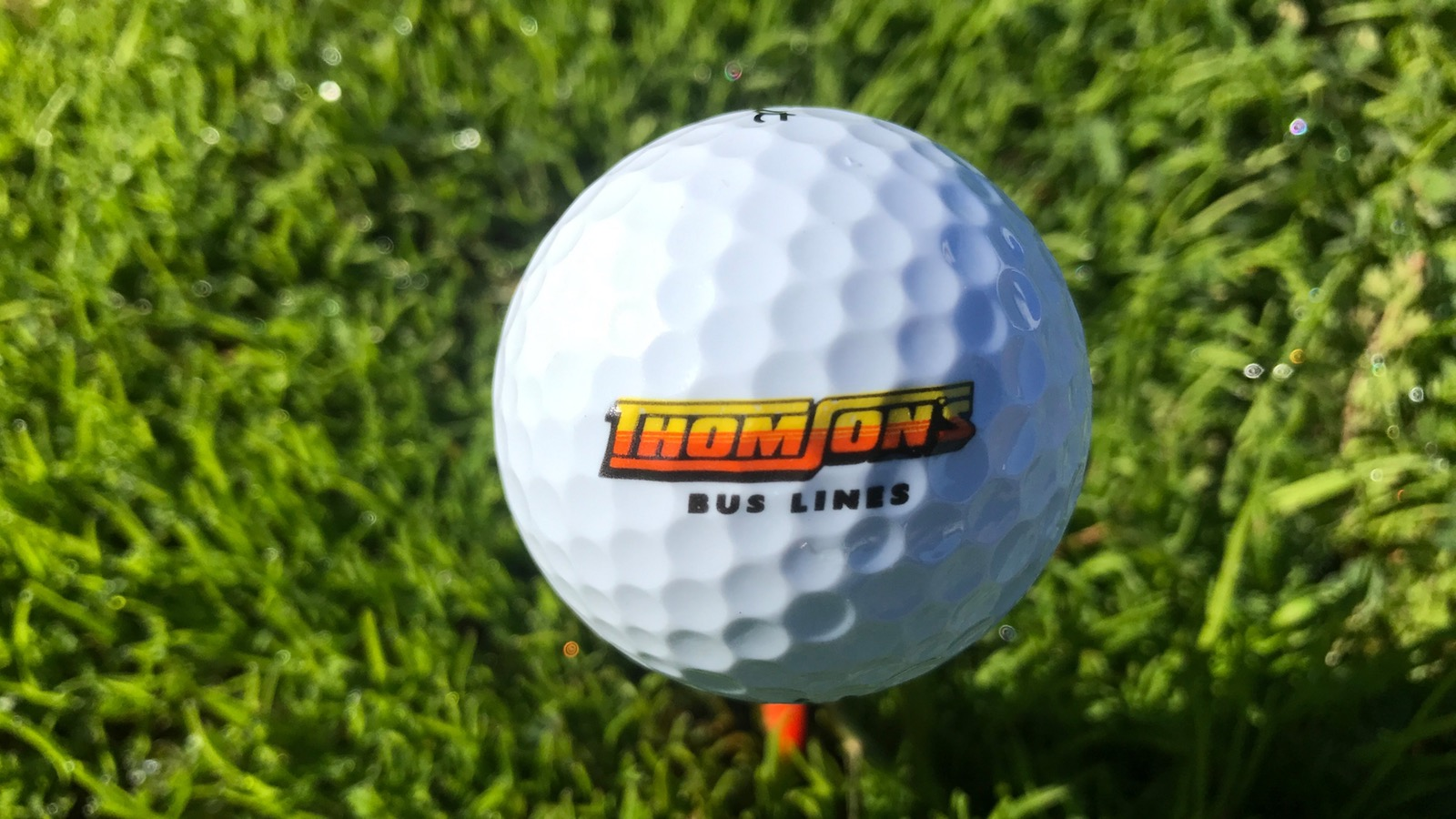 Thomson's Golf Ball