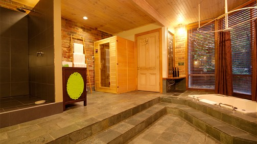 Sanctuary Tower Spa Room with Sauna