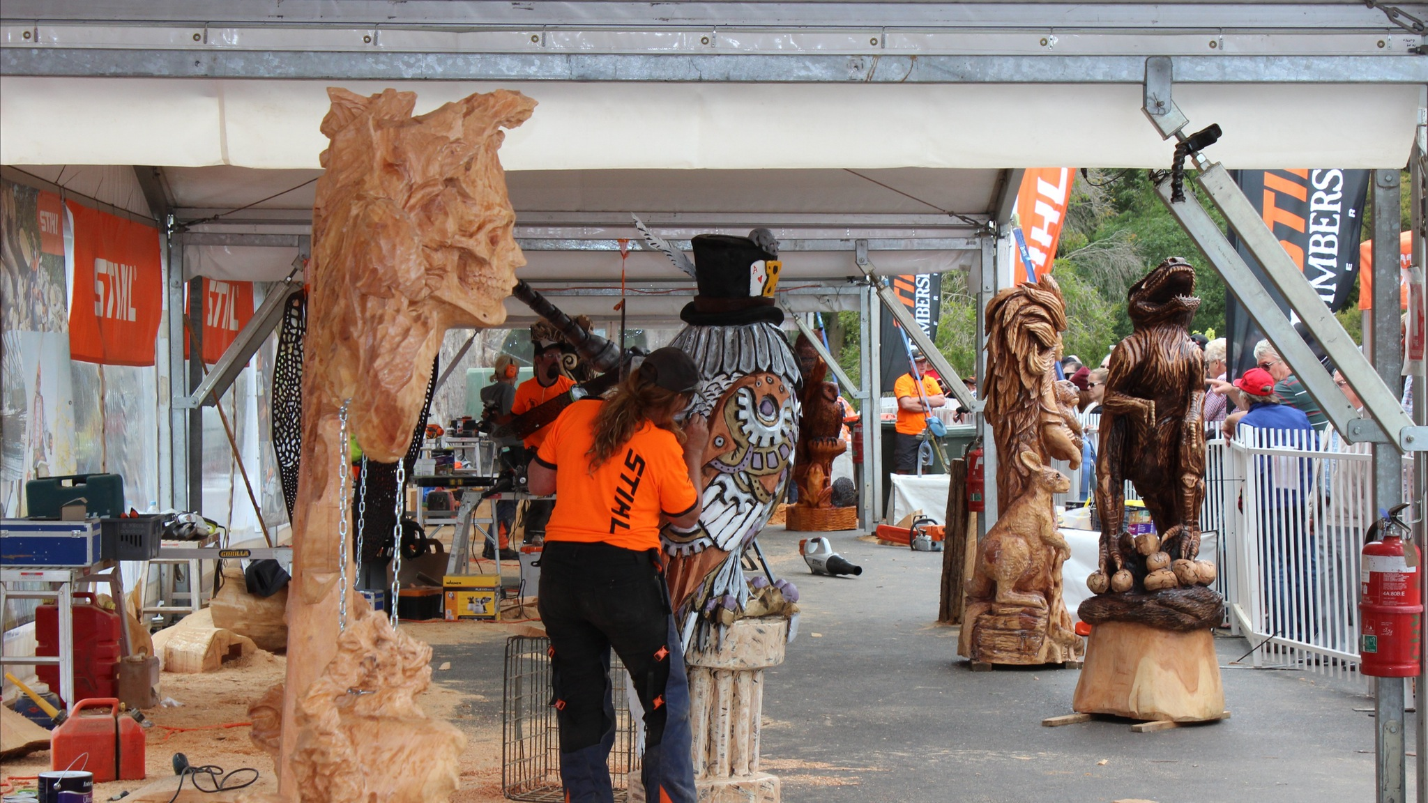 SkyHigh Mount Dandenong Chainsaw Carving