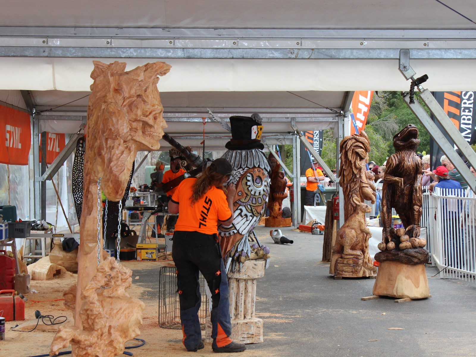 Australian Chainsaw Carving Championships 2017