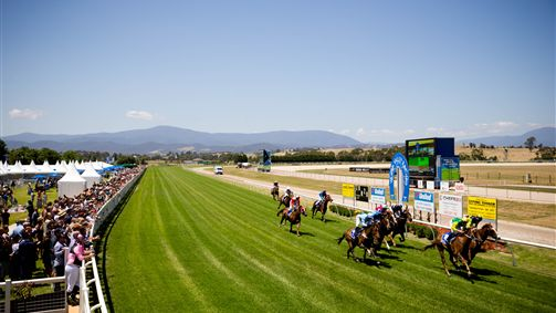 Yarra Valley Orr Stakes Day