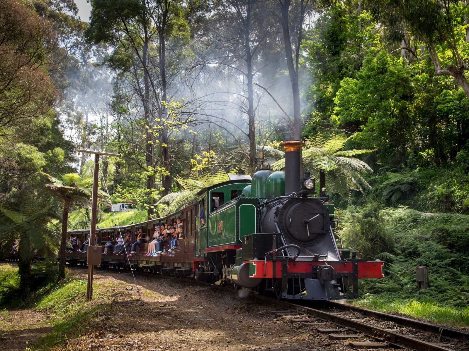 Puffing Billy travels through the Dandenong Ranges