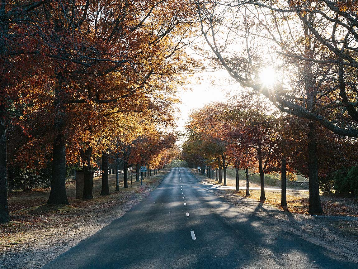 Honour Avenue, Macedon, Daylesford and the Macedon Ranges, Victoria, Australia
