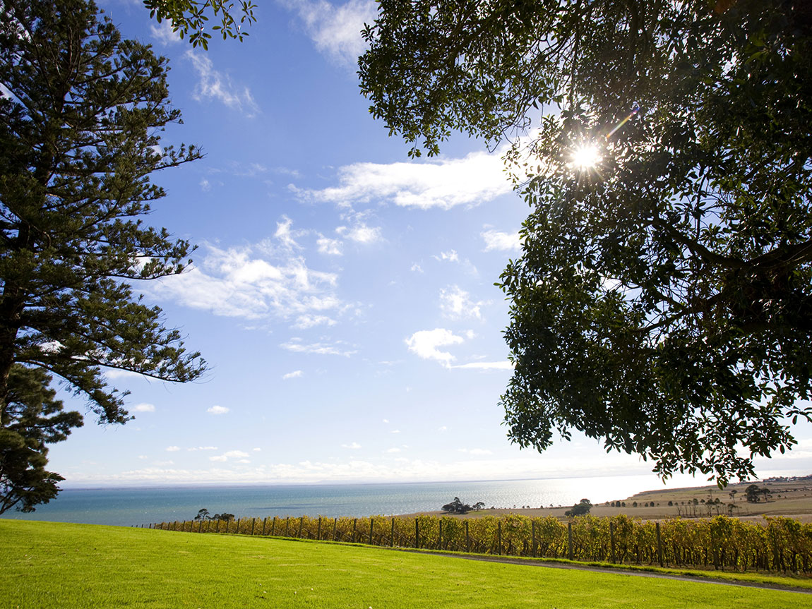 Spray Farm Estate, Geelong and the Bellarine, Victoria, Australia