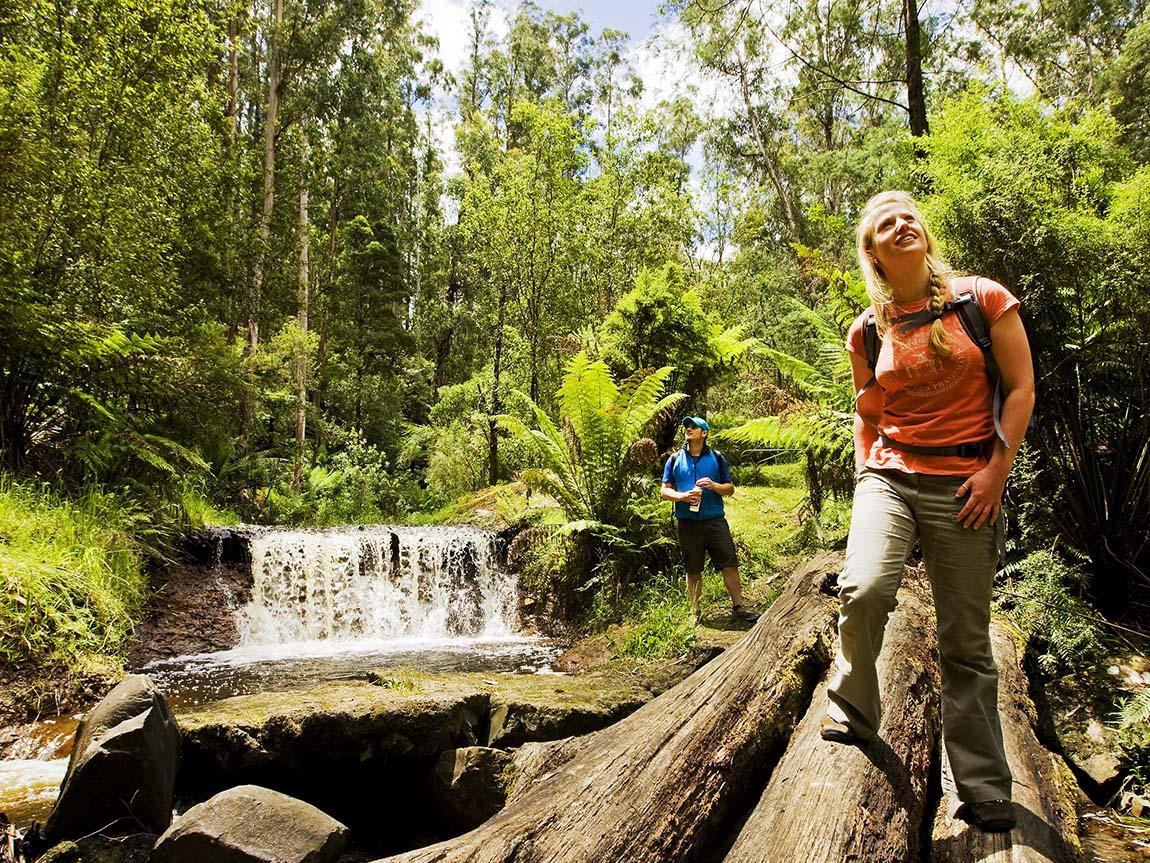 Walhalla Australia  city images : Great Walhalla Alpine Trail, Gippsland, Victoria, Australia