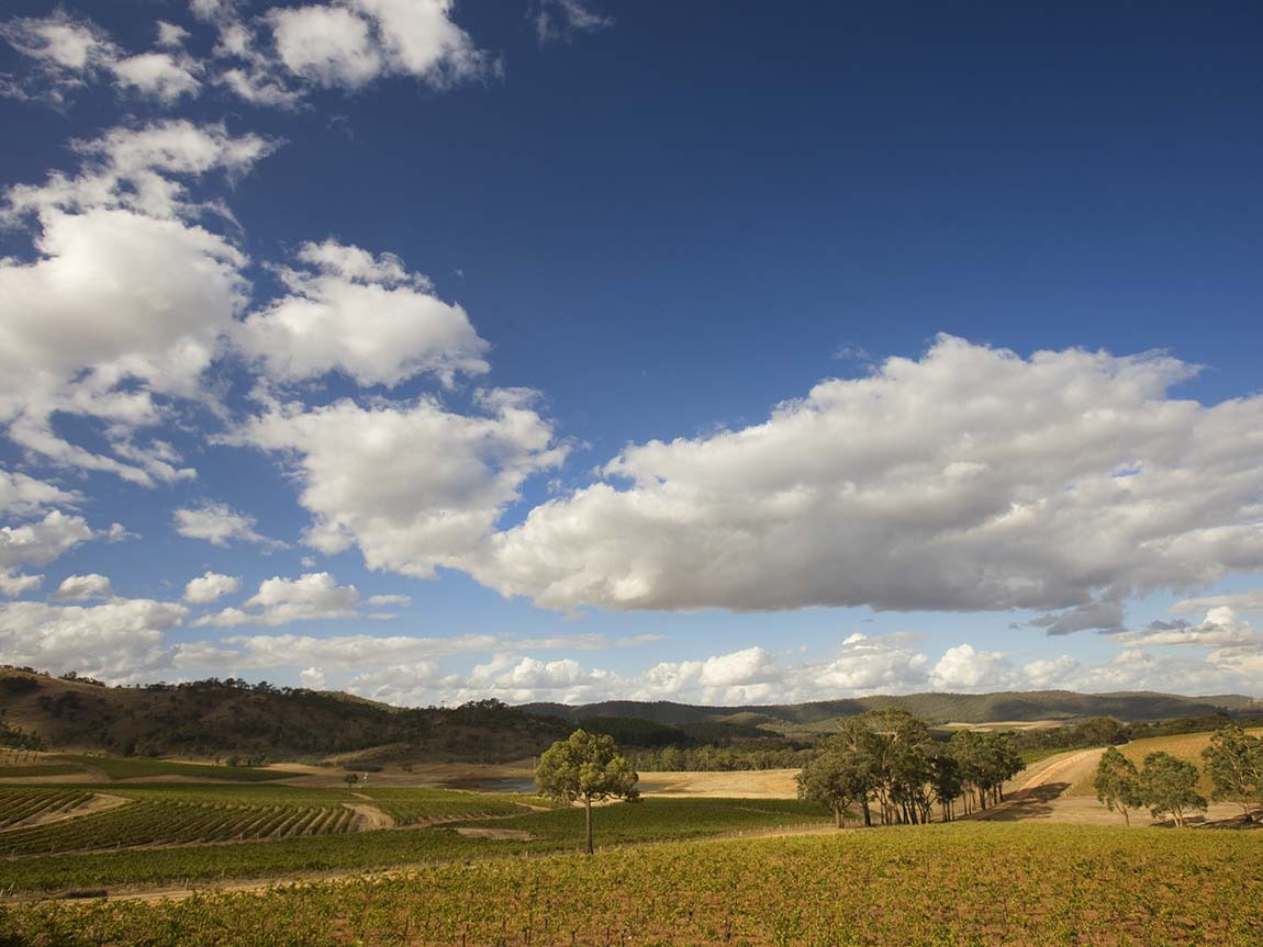 Blue Pyrenees Estate, Goldfields, Victoria, Australia