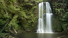 Beachamp falls, Great Ocean Road. Photo by Mark Watson